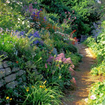 Winding pathway