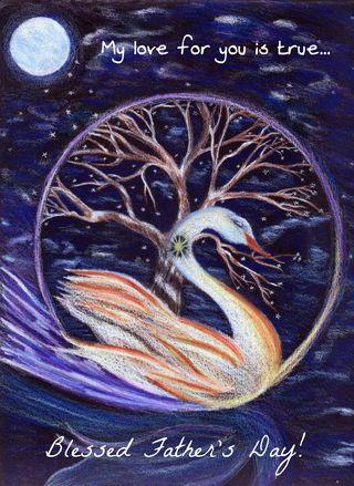 Swan 2 6-11-12