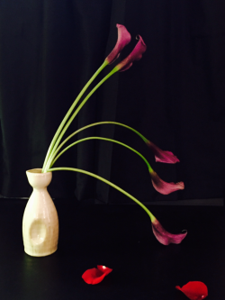 Calla with rose petals #3