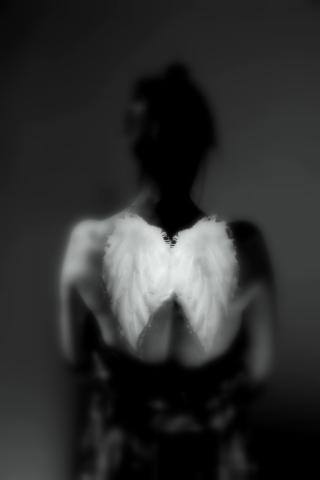 Forgotten wings final 4