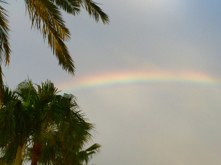 Rainbow - florida