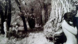 Anima 4 - 1979 a