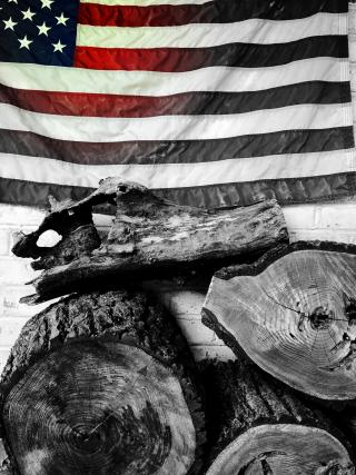 American flag - 4F