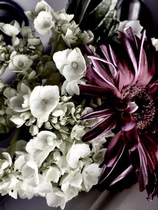 Flowers for john's card
