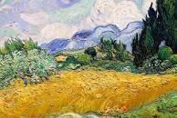 Cypresses Van Gogh