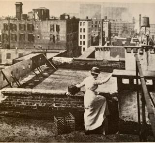 The Visiting Nurse 1908 #1
